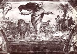 Raffaello Sanzio, Creazione degli animali