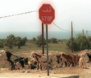 Cartello di stop